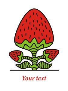 Free Strawberry Stock Photo - 19844010