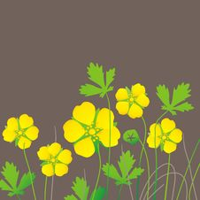 Free Yellow Flowers Stock Photography - 19844032