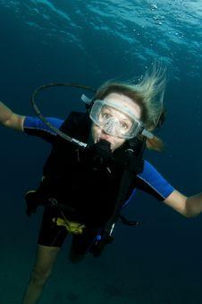 Free Female Scuba Diver Stock Image - 19845251