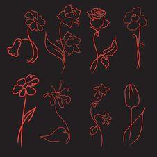 Free Flowers Design Set Stock Image - 19847401
