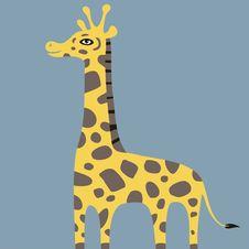 Free Giraffe Stock Images - 19847724