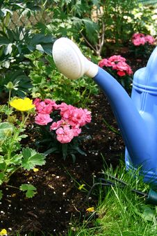 Free Blue Watering And Flowers Stock Photos - 19848713