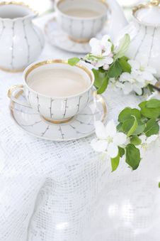 Tea In The Blossoming Garden Royalty Free Stock Photo