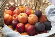 Free Tropical Fruit In A Basket Royalty Free Stock Images - 19851139