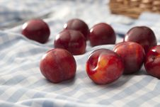 Free Loose Plums Royalty Free Stock Image - 19851256