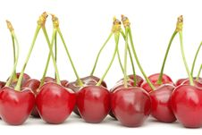 Free Cherry Royalty Free Stock Images - 19851369