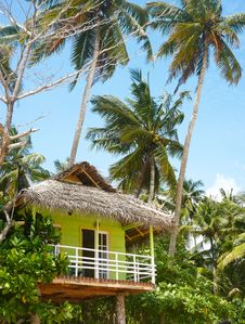 Free Tourist Hut Under Palms, Beach, Sri Lanka Stock Image - 19851381