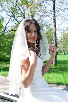 Beautiful Young Bride Sitting On A Bench Stock Image