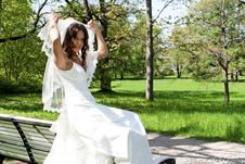 Free Beautiful Young Bride Sitting On A Park Bench Royalty Free Stock Photography - 19852037