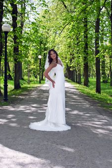 Free Young Bride Standing In An Alley In The Park Royalty Free Stock Image - 19852056