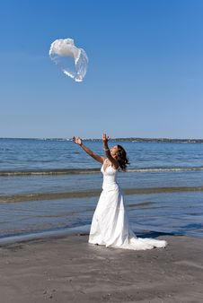 Free Bride Throwing The Veil Stock Photography - 19852372