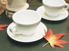 Tea Cup And Maple Leaf Royalty Free Stock Photography