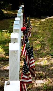Free Military Memorial Headstones Royalty Free Stock Photos - 19854118