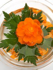 Free Floating Flower Stock Image - 19854251