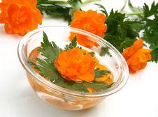 Floating Flower Stock Image