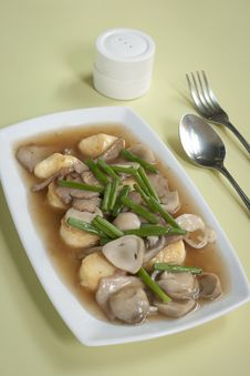 Free Tofu Stock Photo - 19854370