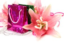 Free Pink Lily And Gift Stock Photos - 19854663