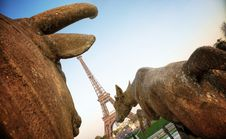 Free Paris (France) - Eiffel Tower Royalty Free Stock Photography - 19856937