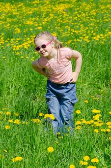 Free Little Beautiful Girl On Meadow Royalty Free Stock Images - 19867859