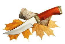 Free The Hunting Knife Royalty Free Stock Photo - 19868365