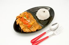 Free Rice With Curry Chicken Stock Photo - 19869600
