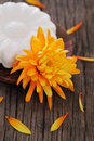 Free Natural Soap With Orange Flower Royalty Free Stock Photography - 19875347