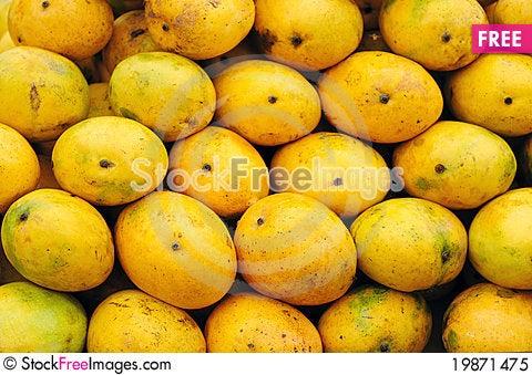 Breastmilk between the mango trees - 1 1