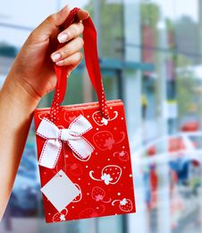 Free A Gift Wrapped Bag Being Held Up Royalty Free Stock Image - 19870376
