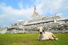 Free Pagoda Of Wat Phukhaothong Temple. Royalty Free Stock Images - 19870439