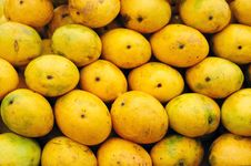 Free Delicious Ripe Mangoes Royalty Free Stock Photo - 19871475