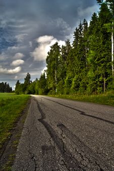 Free Road With Car Tracks Royalty Free Stock Photo - 19871835