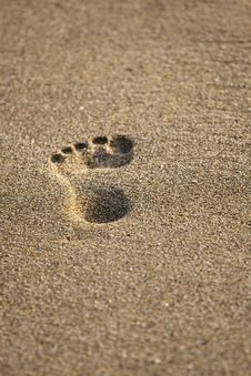 Free Footprints Royalty Free Stock Photo - 19873665