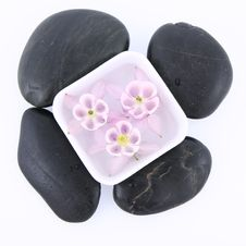 Floating Flower And Spa Stones Royalty Free Stock Photos