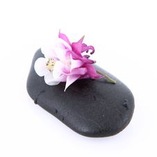 Flower On A Spa Stone Stock Photography