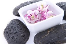Floating Flowers And Spa Stones Stock Image