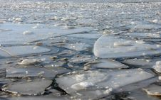 Free Ice Floes Royalty Free Stock Photo - 19875865