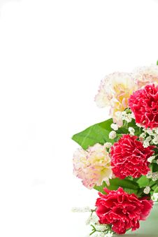 Free Bridal Bouquet Royalty Free Stock Photos - 19876108