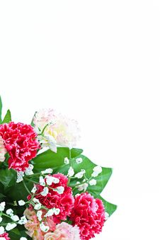 Free Bridal Bouquet Stock Images - 19876144