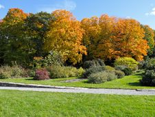Free Public Garden In Fall Stock Photo - 19877320