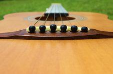 Free Guitar Saddle Royalty Free Stock Images - 19877639