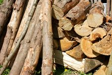 Free Wood Logs Royalty Free Stock Photos - 19878878