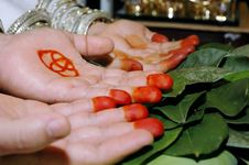 Free Pair Of Palms In A Traditional Wedding Ceremony Royalty Free Stock Photography - 19879027