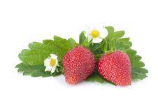 Free Strawberry With Leafs Royalty Free Stock Image - 19879676