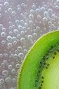 Free Fresh Kiwi Royalty Free Stock Image - 19880636