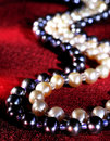 Free Pearl Necklace Stock Image - 19880831