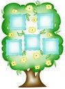 Free Family Tree. Stock Photography - 19886092