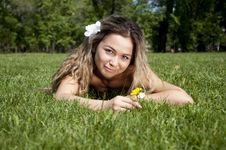 Free Beautiful Young Woman On Field In Summer Stock Photo - 19880550