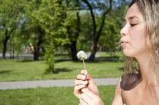 Free Young Girl Blowing On The Dandelion Stock Photography - 19880732