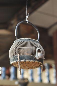 Free Francolin Bird Birdcage Wood Hang Thailand Stock Image - 19881121
