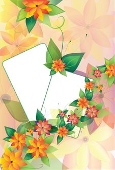 Free Two Floral Frames On Background2 Royalty Free Stock Photos - 19881568